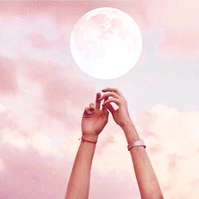 It's that time again 🌝 #taurusfullmoon reminding us to settle into ourselves + GET QUIET. Go inward. Root in the earth. Calm the nervous system. BREATHE. Reflect on all the obstacles you've overcome this year and have compassion for all you've been through  one question we're asking ourselves: what parts of our lives make us feel safe and supported? We commit to nurturing these and releasing the things and relationships that may be getting in the way of our abundance  how bout you?