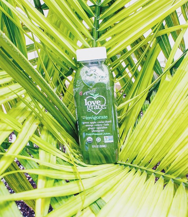 The best kinda Saturday's start with an invigorating dose of greens 🤩🥬 did you get your dose today? Comment below! .. by our tribe at @baya_bar where you can pick up our juices and elixirs all around New York!