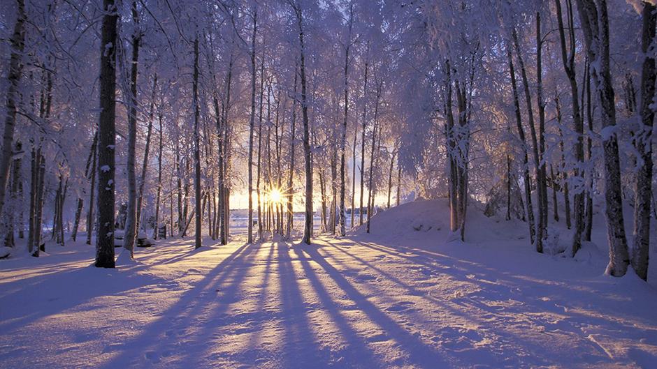 Love Grace Winter Solstice Blog
